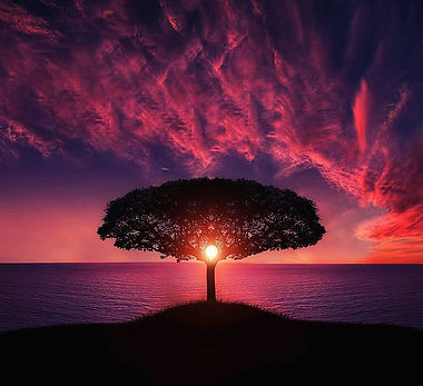 Joy of creation.jpg