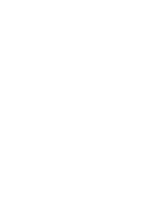 VAPE LOGO high res white.png