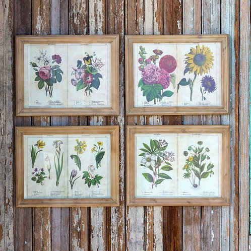 Four Seasons Page Framed Prints, Set of 4