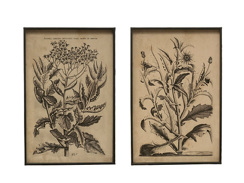 Floral Image Metal Framed Wall Decor (Set of 2 Styles)