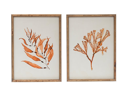 Botanical Print Wood Framed Wall Decor (Set of 2 Styles)