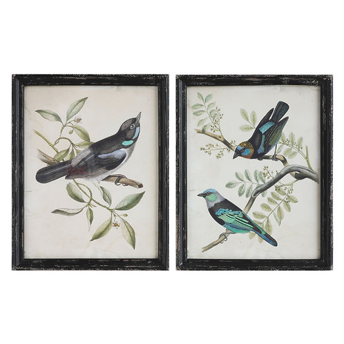 Wood Framed Wall Art with Bird Images (Set of 2 Designs)