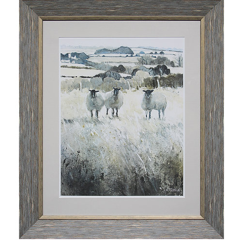 Sheep Framed Wall Decor