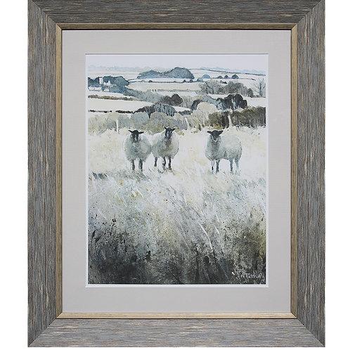 Sheep Framed Wall Decor