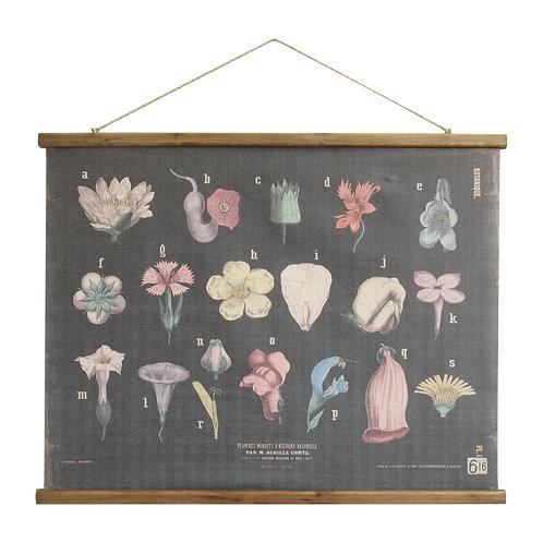 Scientific Botanicals Linen & Wood Scroll Wall Poster