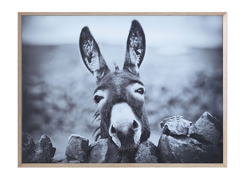 Black & White Donkey on Canvas Framed Wall Decor