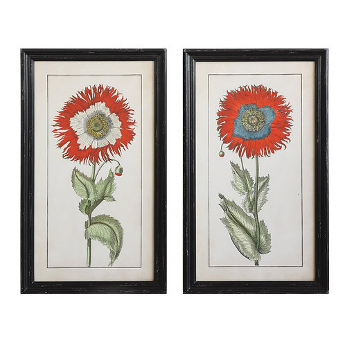 Black Rectangle Wood Framed Wall Art of Single Flowers (Set of 2 Designs)