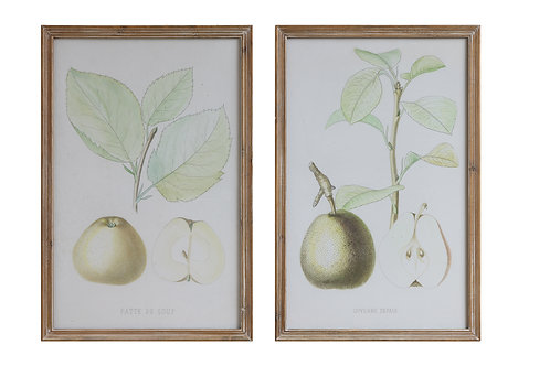 Pear Image Wood Framed Wall Decor (Set of 2 Designs)