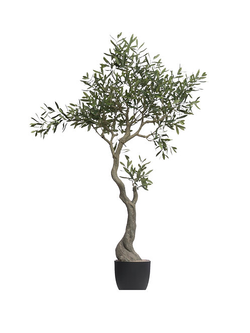 """60-1/4""""H Faux Olive Tree in Pot"""