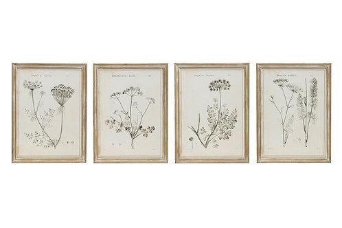 Vintage Reproduction Botanical Print Wood Framed Wall Art (Set of 4 Styles)