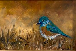 Tiny Blubird