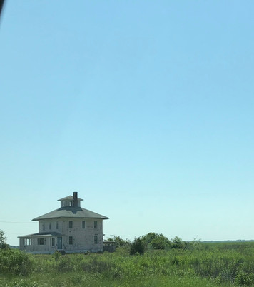 Pink House Plum Island