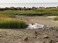 Low Tide Dennisport