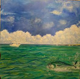 Tuna Flyline Fight