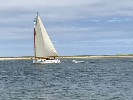 Sailing in Chatham