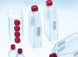 biotech frascos garrafas cultura
