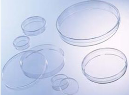 biotech placas petri cultura greiner