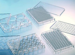 biotech placas pcr cultura elisa