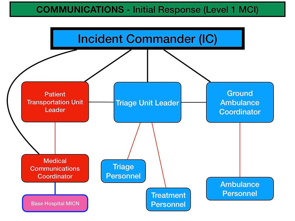 MCI Communications - Wix.jpg