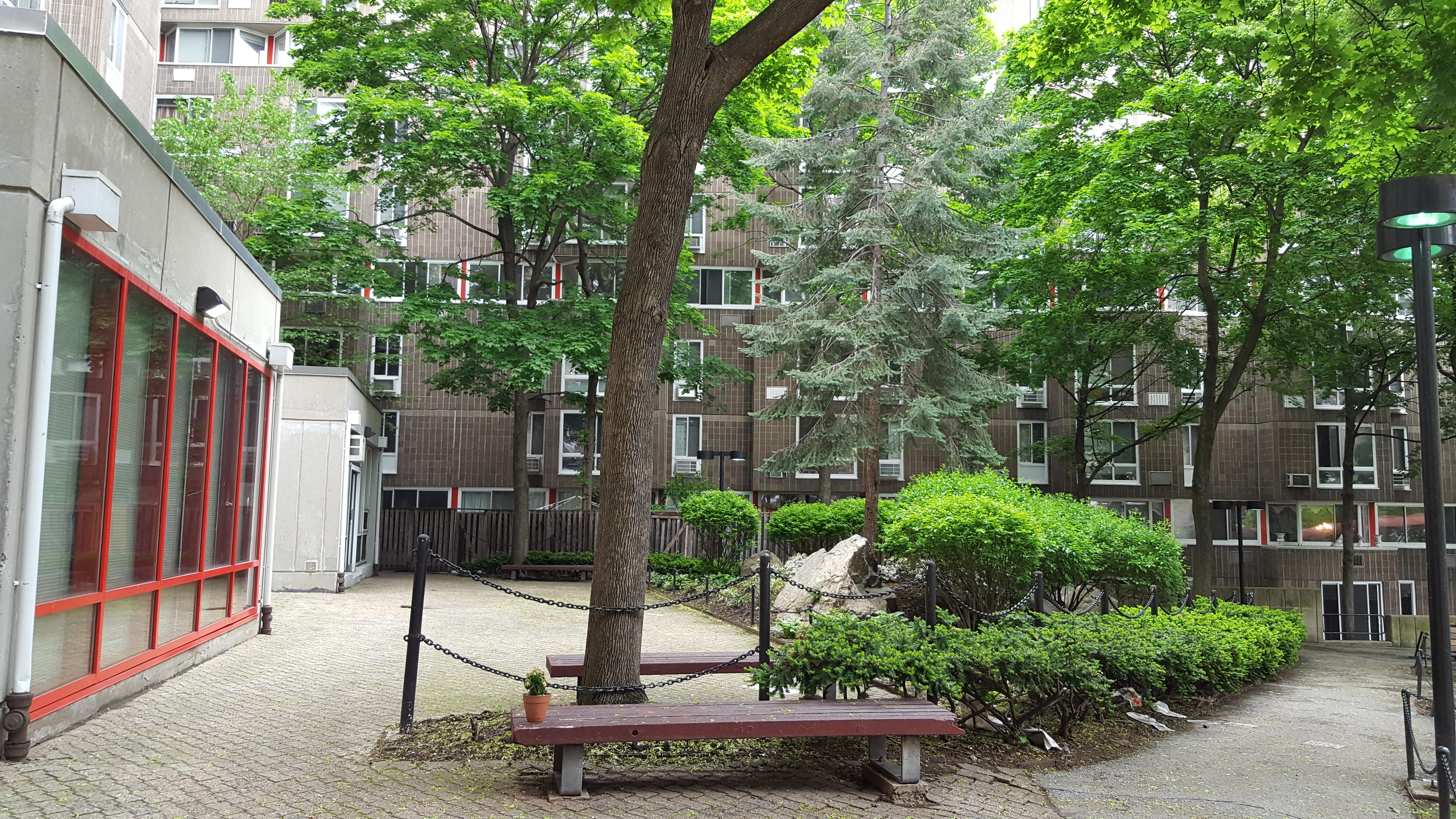 mlr-courtyard