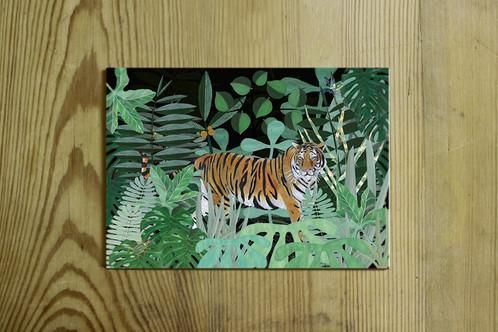postkarte nr 0039 tiger im dschungel. Black Bedroom Furniture Sets. Home Design Ideas