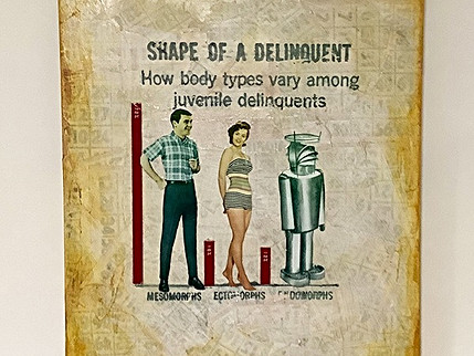 Shape of a Delinquent