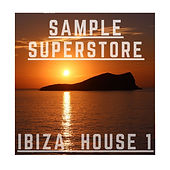 Ibiza Tech House Disco Sample Pack
