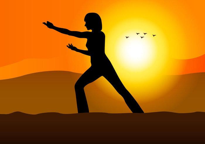 """DVD """"Tai Chi Kung Relajación y meditación en movimiento"""""""