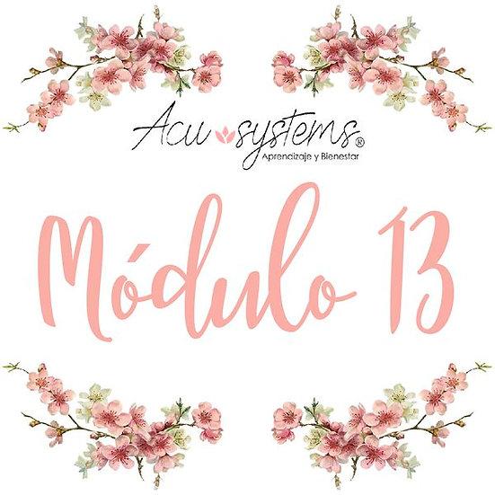 Módulo 13