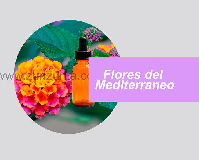 Flores del Mediterráneo 1pz