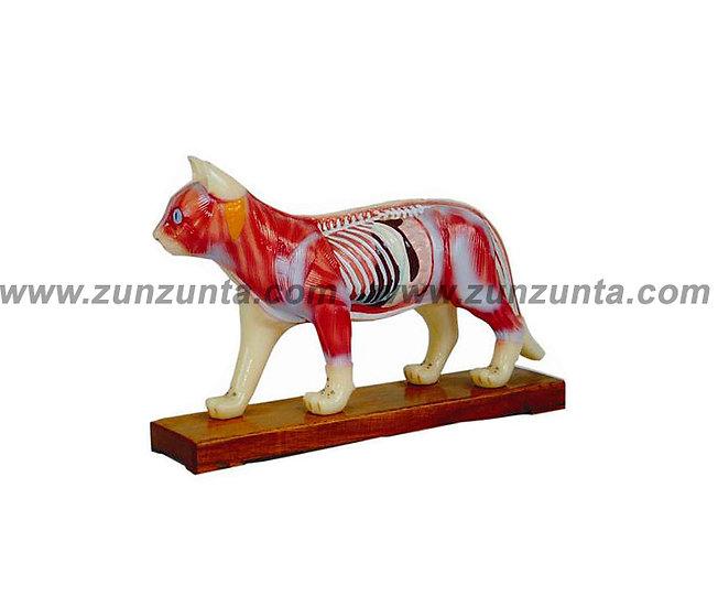 Modelo de gato (28 cm)