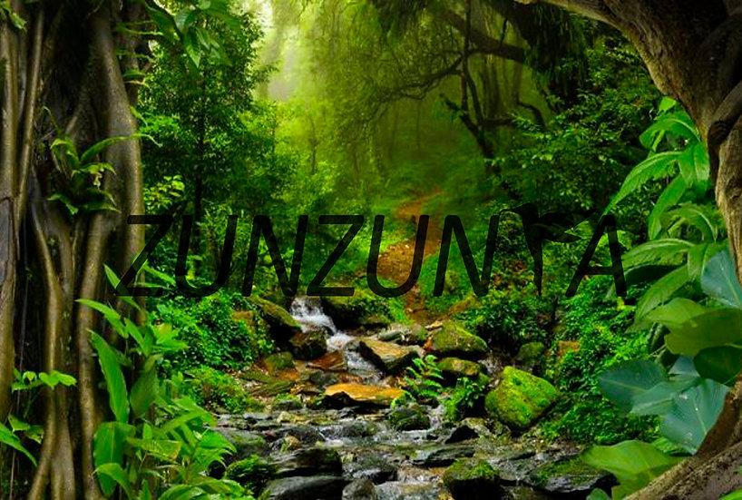 Esencia de Madre selva