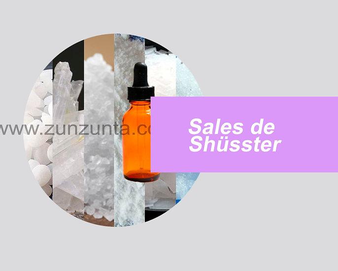 Sales de Shüssler kit 12pz