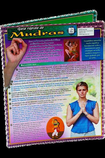 Guía rápida de Mudras