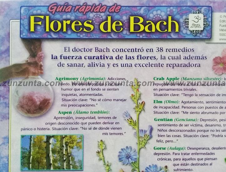 Guía Rápida de Flores de Bach