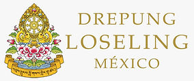 drepung_loseling_mexico.jpeg
