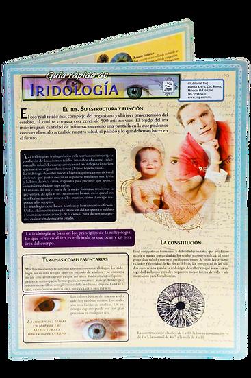 Guía rápida de Iridología