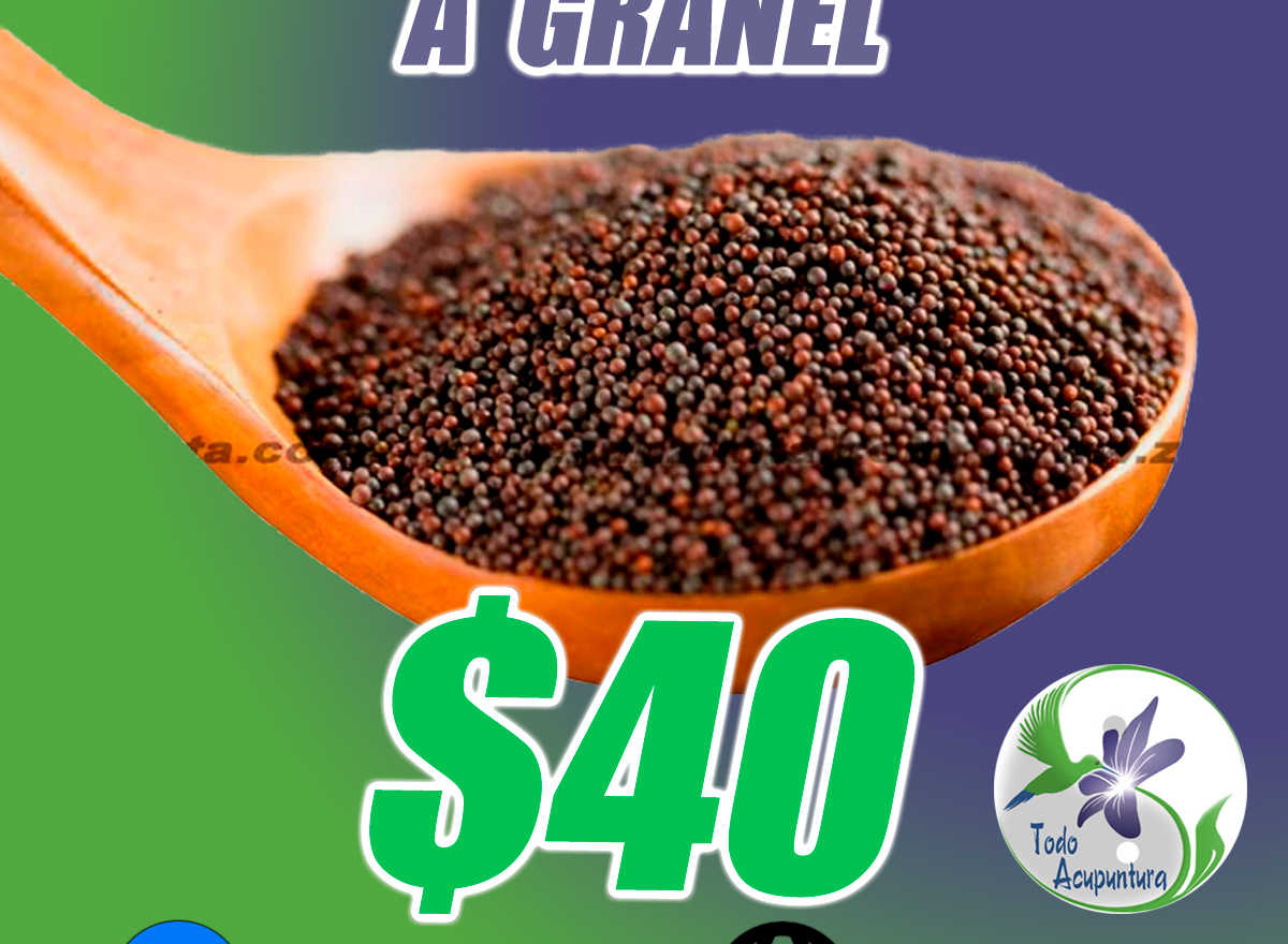 Semillas de mostaza a granel pomadera con aprox. 2000 pzs