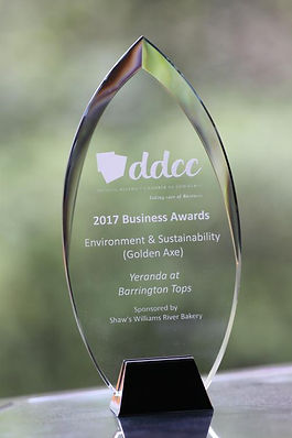 Golden axe sustainability award
