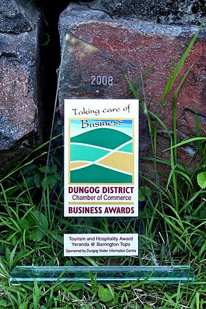 Business award trophy