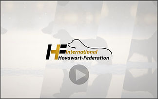 IHF Video Banner with grey frame JPEG.jp