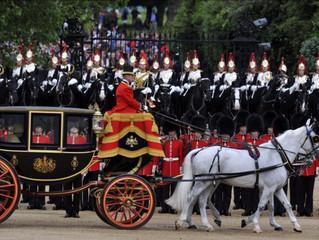 Household Cavalry Horses get a Silver Shadow Horse Solarium
