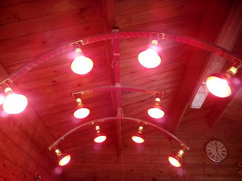10 Lamp Horse Solarium
