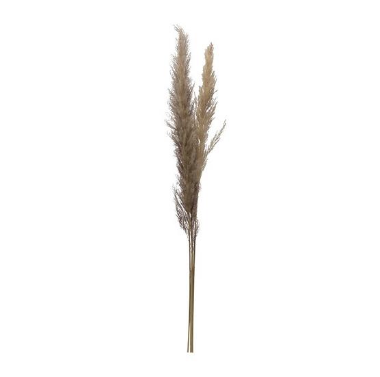 Dried Natural Grass Bunch