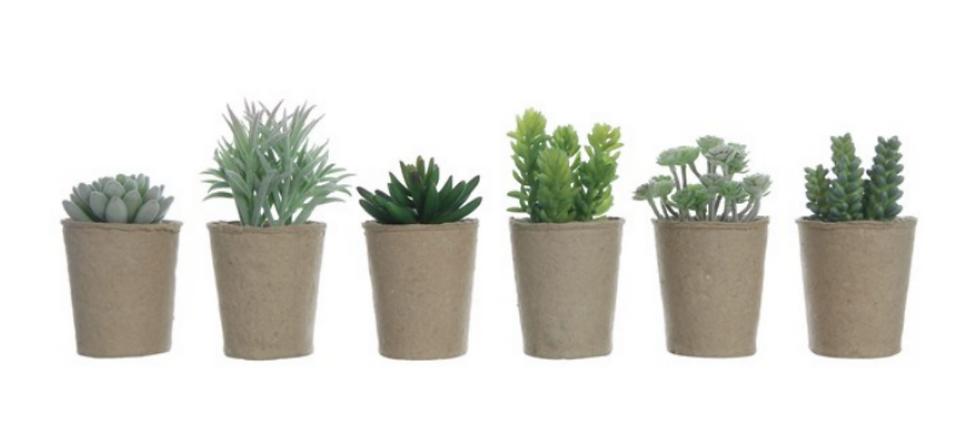 Faux Succulent in Paper Pot, 6 Styles