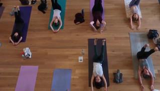 Yoga at Edinburgh Wellbeing Festival