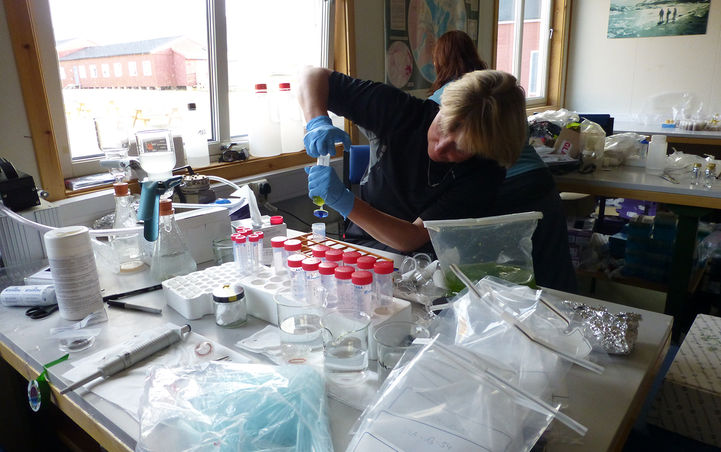 Laboratoriearbeid i Ny Ålesund.