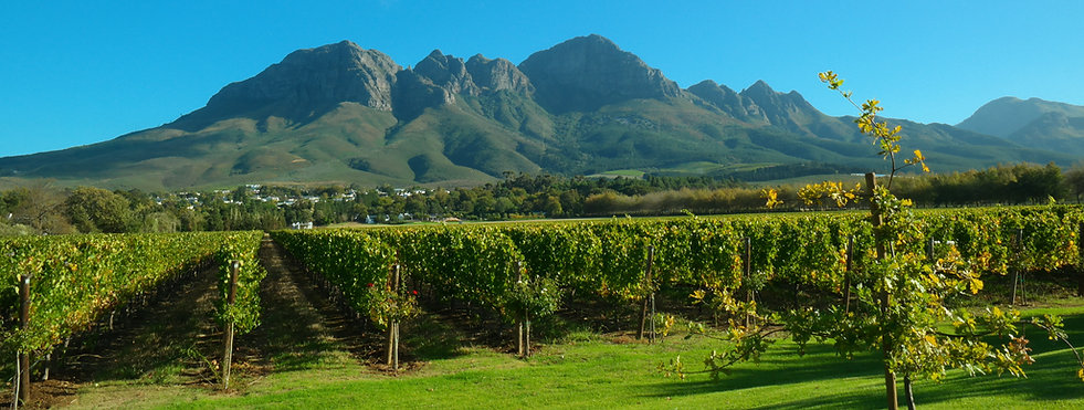 The Helderberg Mountain is part of the Hottentots-Holland mountain range in the Western Cape, South Africa. Photo taken from Lourensford Estate by Leana Habeck.