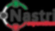 Nastri-corporation-v0.png