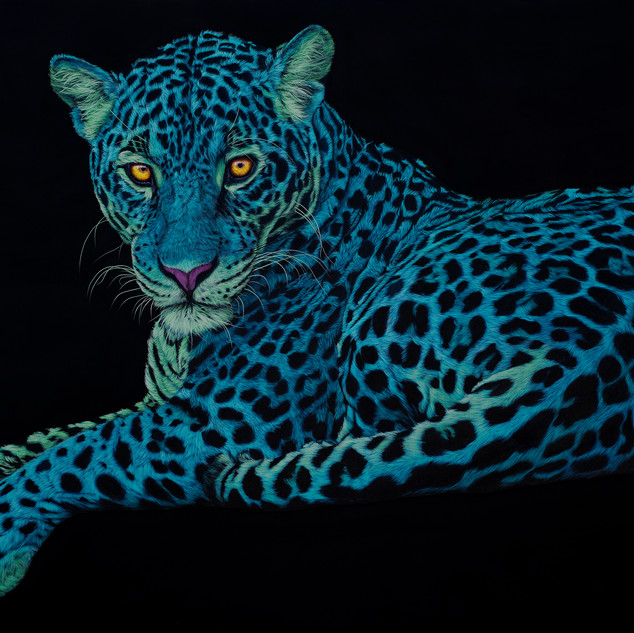 Jaguar on black